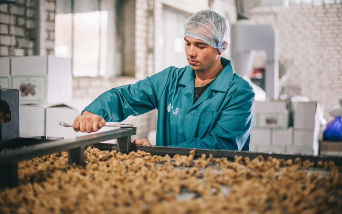 молодой парень ремонтирует линию по передаче ядра грецкого ореха