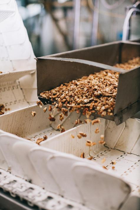 фото ядра грецкого ореха