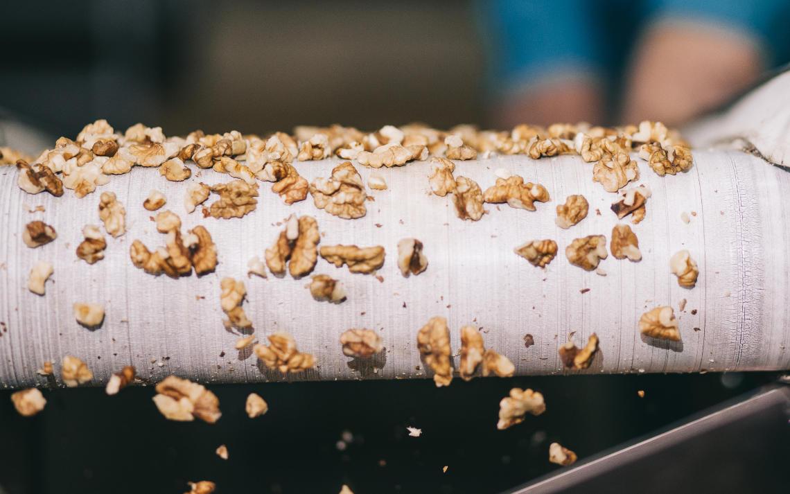 фото на которой подается ядро грецкого ореха оно тут очищается
